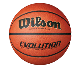 Wilson Evolution Indoor Basketball