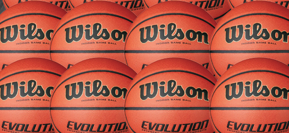 Wilson Evolution Basketballs